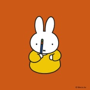 miffy with magic wand 2