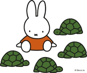 Miffy with tortoises turtles