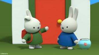 Miffy's Adventures on Tiny Pop 14