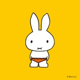 Miffy in swimming trunks bathing suit