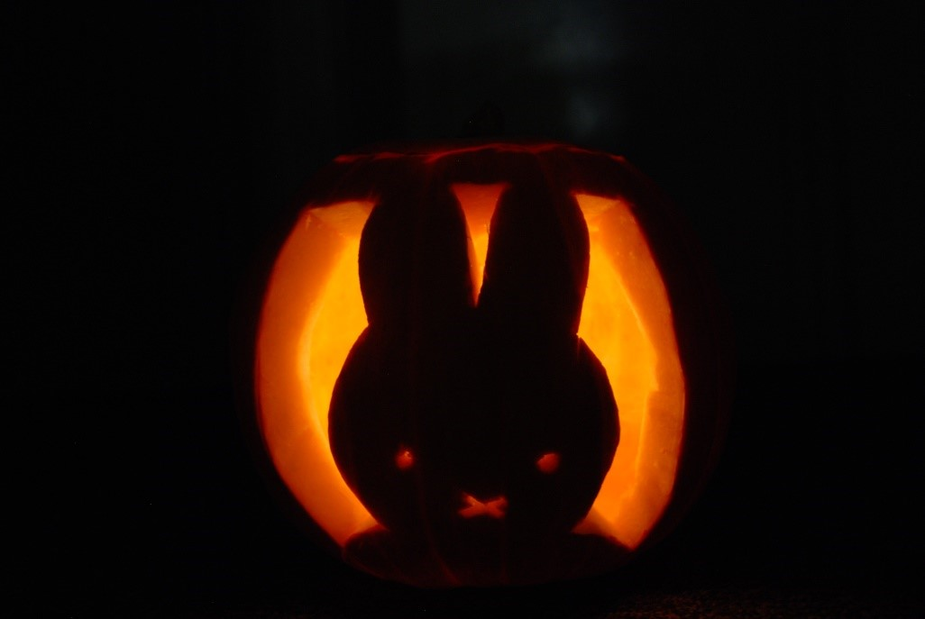 light up your miffy pumpkin